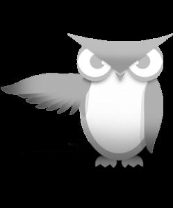 eyeonadvertisingsolutions-Owlie-249x300